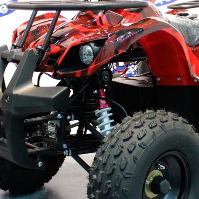 Передняя независимая подвеска электроквадроцикла 800D