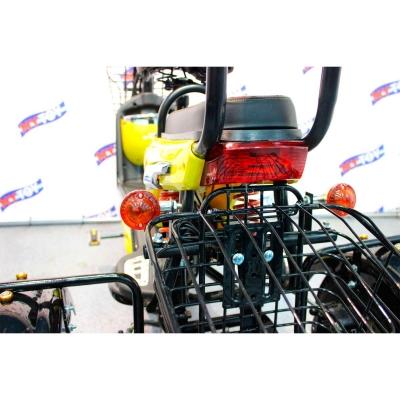 Поворотники, задний стоп и корзина электротрицикла 500D